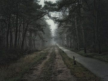 Atmosferische mist van Dirkjan Dokters
