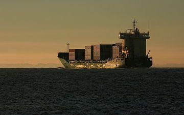 Containerschip dicht bij kust Zoutelande van MSP Canvas