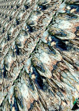 Rough bark van Leopold Brix