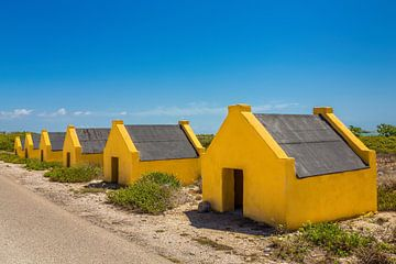 Reihe von gelben Sklavenhäusern an der Küste der Insel Bonaire von Ben Schonewille