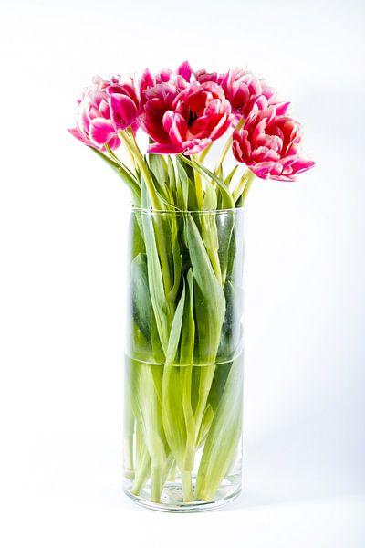 Stilleven tulpen van Joke Beers-Blom