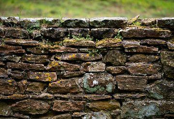 Eeuwenoude bemoste muur von Lies van den Berg