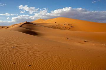 Woestijnen en Zandduinenlandschap bij Zonsopgang, de Sahara, Afrika van Tjeerd Kruse