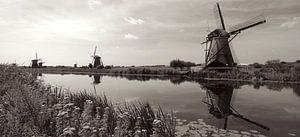 Windmills at Kinderdijk van