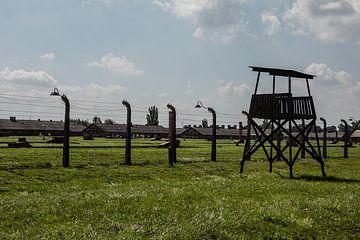 op het terrein van Auswitz Birkenau van Eric van Nieuwland