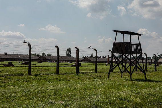 op het terrein van Auswitz Birkenau
