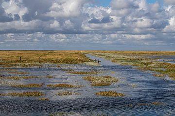 Zoutmoeras bij vloed in de buurt van Westerhever van Alexander Wolff
