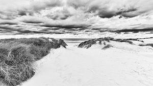 Het duin strand en de Noordzee in zwart wit van eric van der eijk