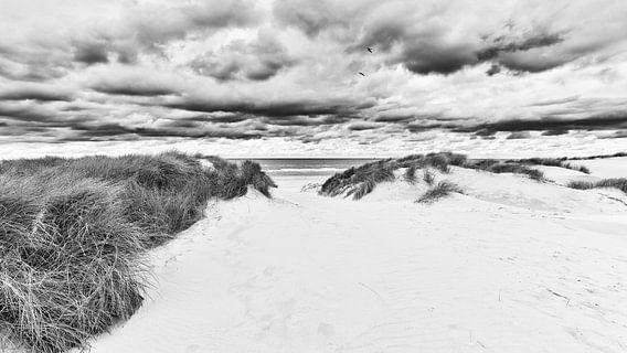 Het duin strand en de Noordzee in zwart wit