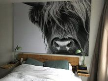 Kundenfoto: Portrait Scottish Highlander Schwarzweiss von Sandra van Kampen, auf poster