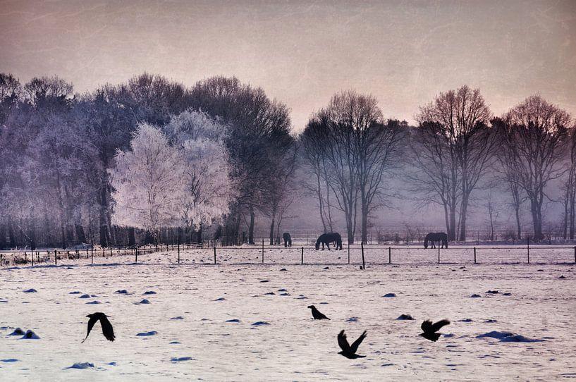 Digital - Shades of winter van Angelique Brunas