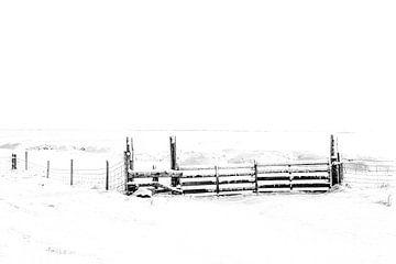 Winter in Drenthe van Gonda van Wijk