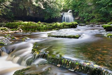 West Burton Falls, Yorkshire, Engeland van Markus Lange
