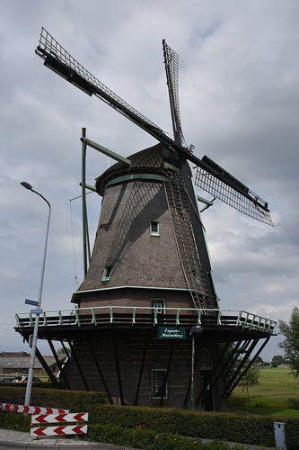 Molen de Hoop Wervershoof (Noord-Holland) van Klaas Leguit