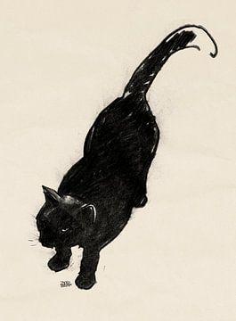 Micky, tekening van een kat van Pieter Hogenbirk