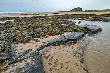 Küstenlandschaft in Ostengland mit im Hintergrund Burg Bamburgh von Jeroen Stel