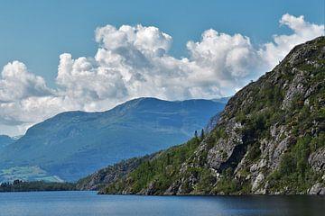 De bewolkte Noorse fjorden van Naomi Elshoff