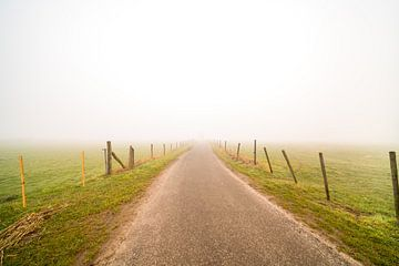 Weg im Nebel von Marcel Derweduwen