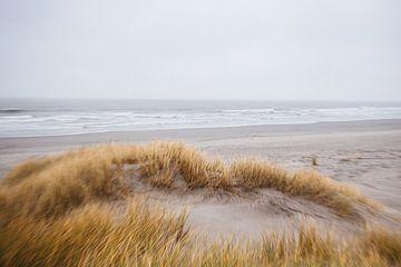 plage sur Jasper Verolme