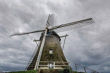 De molen van Michele Schuurkamp