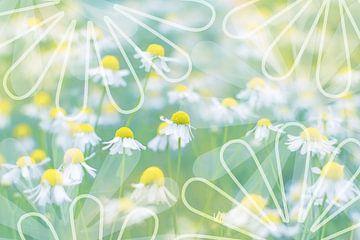 Kleurrijke lente van Christa Thieme-Krus