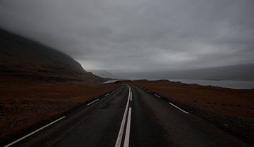 Snelweg van Jip van Bodegom