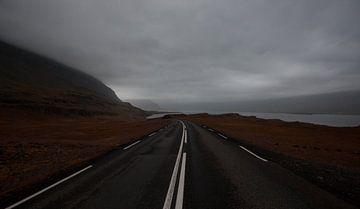 Snelweg sur Jip van Bodegom