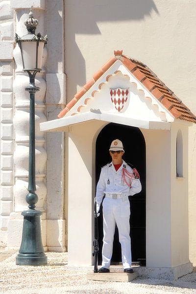 Paleiswacht Monaco van Michel Groen
