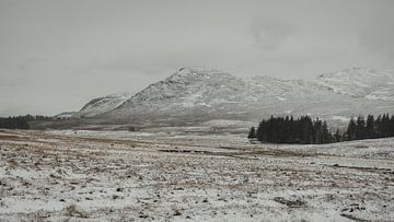 Berge in der Nähe von Laggan von Paulien van der Werf