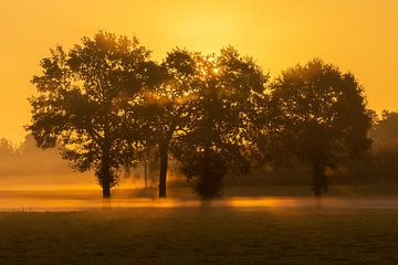 zonsopgang van eric brouwer