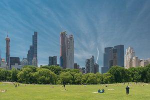 Central Park, New York van Tim Groeneveld