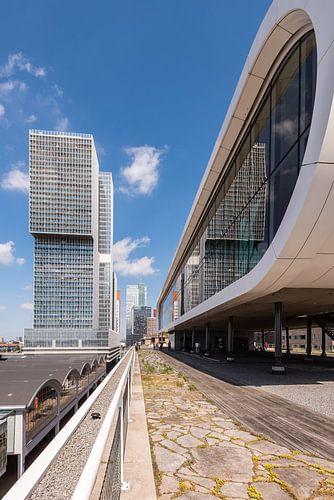 Dem Rotterdam und Las Palmas, Rotterdam