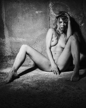 Naakte vrouw in een donkere kelder. #8180 van william langeveld