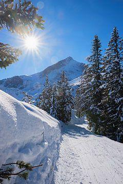 Winterwanderweg am Kreuzeck von Susanne Bauernfeind