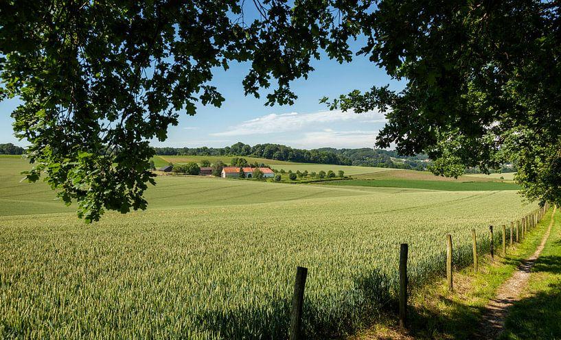 Typisch Limburgs Landschap in de buurt van Walem van John Kreukniet