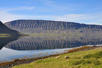 IJSland, Vestfjardavegur,  Mirror van Yvonne Balvers