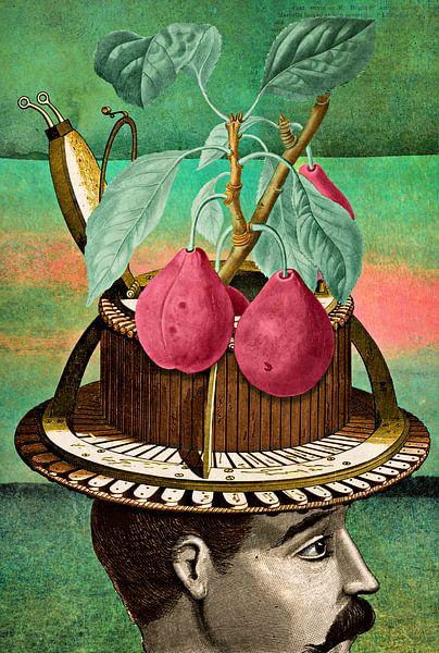 How Fruits are Invented van Marja van den Hurk