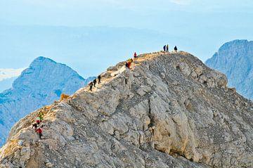 Auf zum Gipfel! von Lars-Olof Nilsson