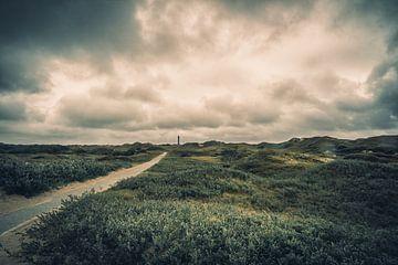 De weg naar de vuurtoren van Steffen Peters