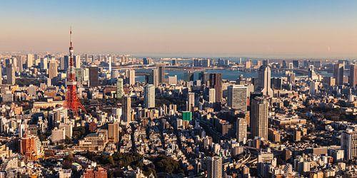 TOKYO 11 van Tom Uhlenberg