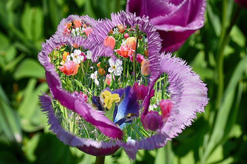 Kleurrijk Tulp Design van Hanneke Duifhuize