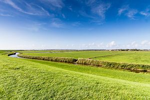 Landschap Nes Ameland
