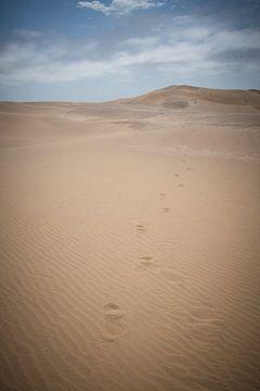 Des pas dans le sable sur Jille Zuidema