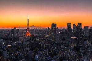 TOKYO 01 van