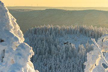 Berghut in een ijzig koude omgeving van André Post