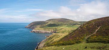 Zicht op de rotskust op The Wales Coast Path, fotoprint van Manja Herrebrugh - Outdoor by Manja