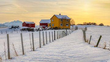 Winter op Senja, Noorwegen van Adelheid Smitt