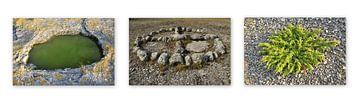 Vikings Circles von Sonja Pixels