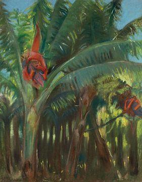 Kazimierz Stabrowski-Der Bananenwald, aus der kanarischen Sammlung