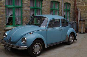 Blauer Käfer I von Richard Pruim